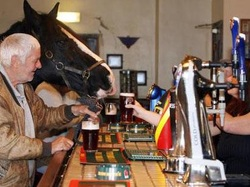 Brendan Spaar thinks a bar is no place for a horse, of course!